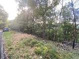 00 Shadowick Mountain Road - Photo 3