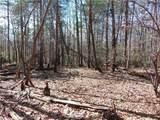 14 Twin Fawns Trail - Photo 9