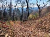 0 Coopers Gap Road - Photo 8