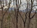 Tract2 Lindsey Property-Logans Ridge Rd - Photo 21