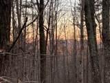 Tract2 Lindsey Property-Logans Ridge Rd - Photo 28