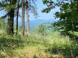 Tract1 Logans Ridge Road - Photo 21