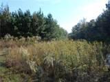 0 Douglas Creek Road - Photo 5