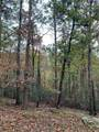 111 Oglethorpe Mountain Road - Photo 2