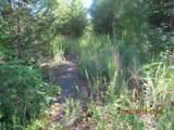 00 Bob White Trail - Photo 7