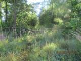 00 Bob White Trail - Photo 8