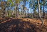 Lot 11 River Highlands Road - Photo 18