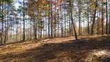 Lot 11 River Highlands Road - Photo 21