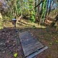 2315 Lakeside Trail - Photo 37