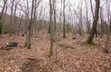 1127 Woodland Trace - Photo 2