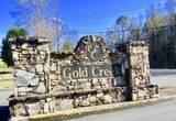 511 Gold Bullion Drive - Photo 66