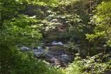 Lot 7 Mountain Falls Overlook - Photo 7