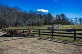 1343 New Cut Road - Photo 56