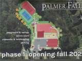 3614 Palmer Falls Drive - Photo 5