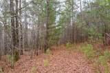 0 Lower Creek Trail - Photo 9