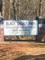 0 Ne Black Shoals Road - Photo 7