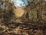 0 Creek Nation - Photo 4
