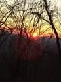 170 Little Hendricks Mountain Circle - Photo 48