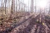 263 Hickory Gap Trail - Photo 12