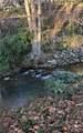 1600 Clifton Ridge - Photo 8