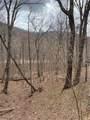 LT3150 Crippled Oak Trail - Photo 5