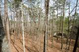 242 Hunters Trace - Photo 59