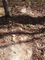 0 Redbone Run - Photo 12