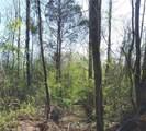 0 Redbone Run - Photo 5