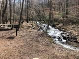 0 Mountain Falls Loop - Photo 22