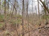 0 Clay Creek Falls (21+/- Ac) Road - Photo 2