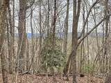0 Clay Creek Falls (21+/- Ac) Road - Photo 8