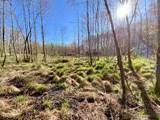 419 Chisom Trail - Photo 17