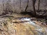 395-E Treat Mountain Road - Photo 3