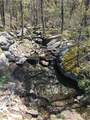170 Mystic Trail Lane - Photo 15