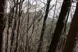 52 Columbine Drive - Photo 4