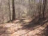 Tr 3 Jones Mountain Road - Photo 14