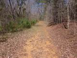Tr 3 Jones Mountain Road - Photo 20