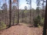 Tr 3 Jones Mountain Road - Photo 31