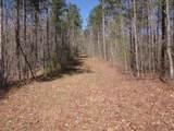 Tr 3 Jones Mountain Road - Photo 33