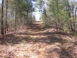 Tr 3 Jones Mountain Road - Photo 35