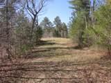 Tr 3 Jones Mountain Road - Photo 39