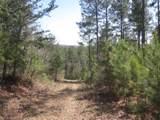 Tr 3 Jones Mountain Road - Photo 40