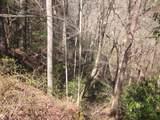 Tr 3 Jones Mountain Road - Photo 41