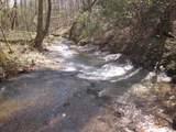 Tr 3 Jones Mountain Road - Photo 45