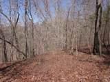 Tr 3 Jones Mountain Road - Photo 5