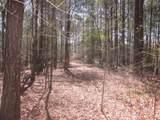 Tr 3 Jones Mountain Road - Photo 6