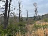 0 Pack Creek Road - Photo 16