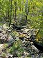 218 Mystic Trail Lane Lane - Photo 25
