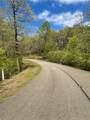 218 Mystic Trail Lane Lane - Photo 4