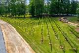 5580 Vineyard Park Trail - Photo 64